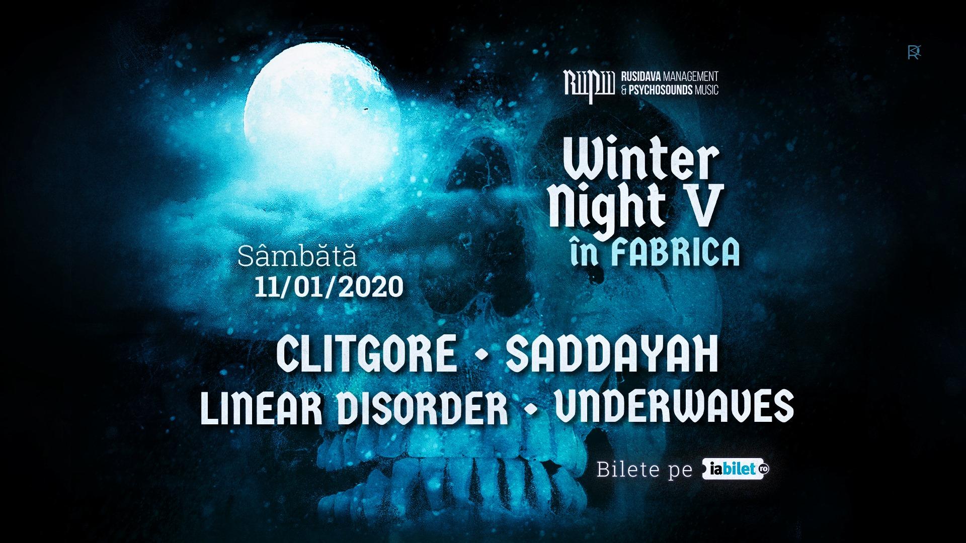 winternightv